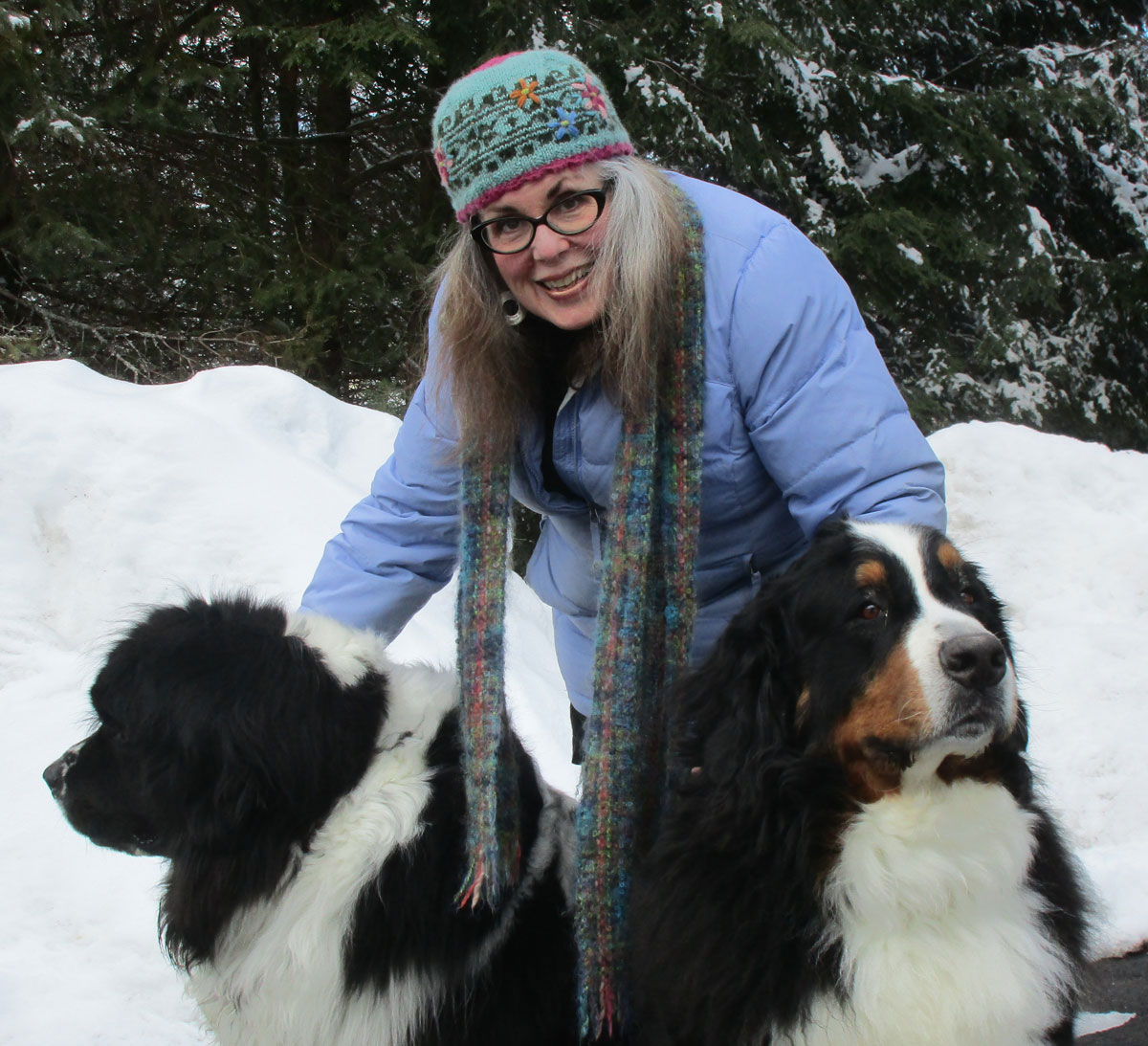 Gwendolyn Evans with her Newfoundland and Bernese Mountain Dog
